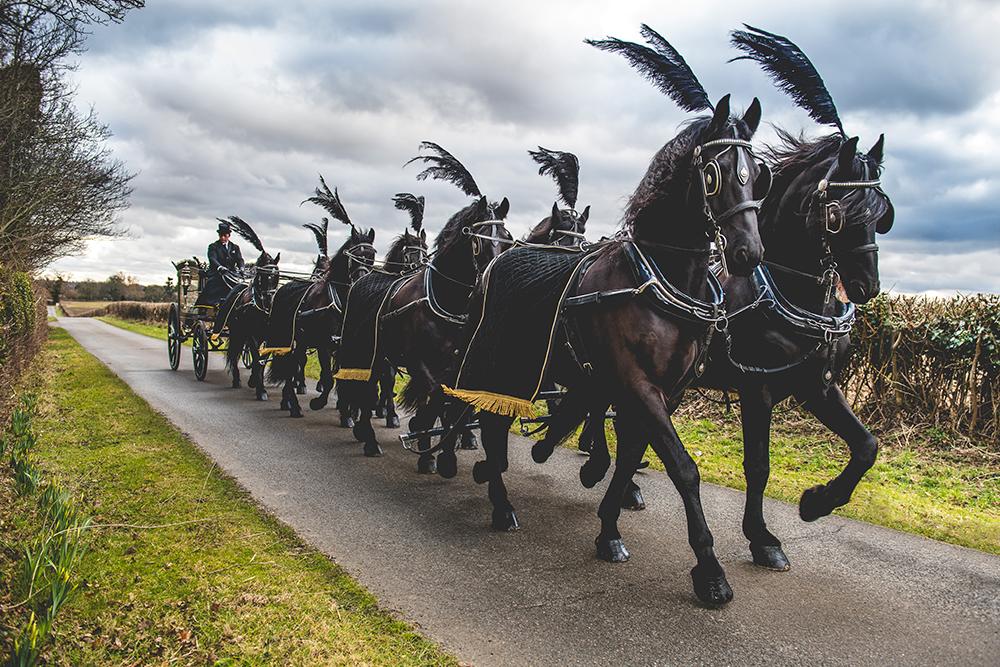 8 horse funeral at Hengrave Hall, Norfolk | Liz Bishop Photography